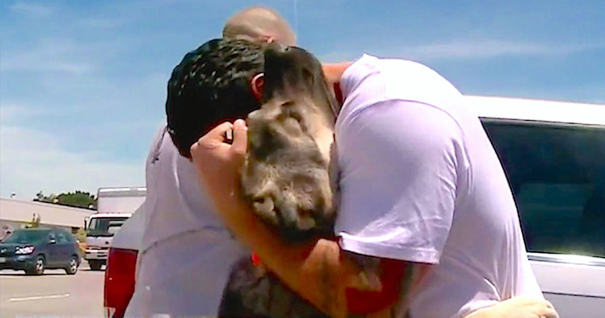 Soldier who was forced to leave stray dog he rescued in Iraq reunites with him on the other side of earth