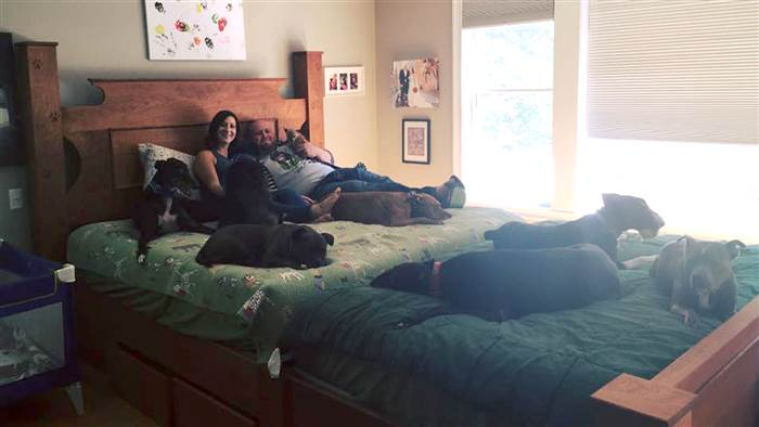 The Hughes built a giant bed so they could sleep with their many dogs.