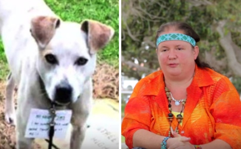 Homeless Woman Walks All Night In Pouring Rain To Save Abandoned Dog