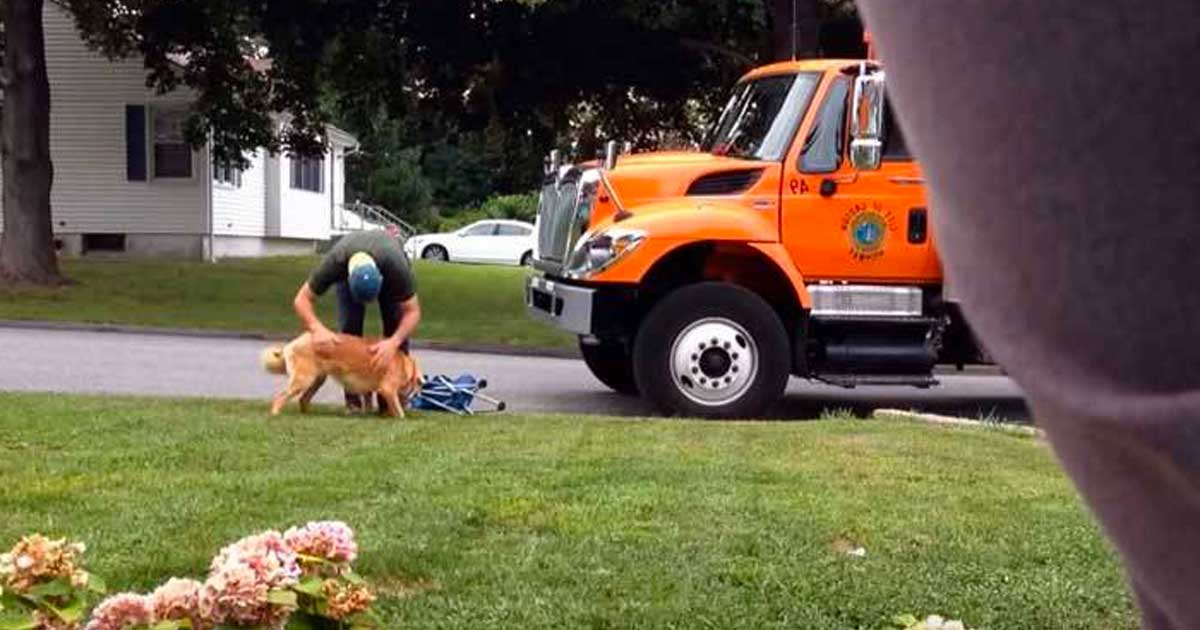 Owner Secretly Films Garbage Man Approaching His Dog