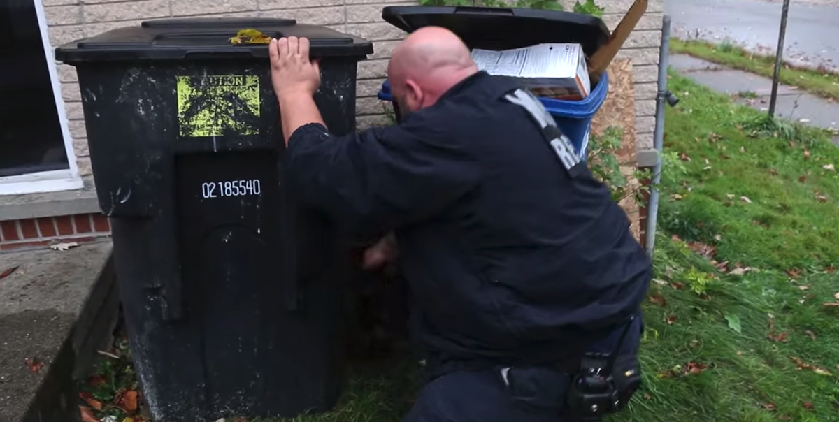 Man thinks he's rescuing a puppy, reaches behind trash can to find its friend too
