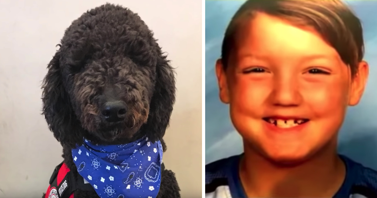 Woman Gets Rid of Autistic Boy's Service Dog, Days Later the Kid Goes Missing