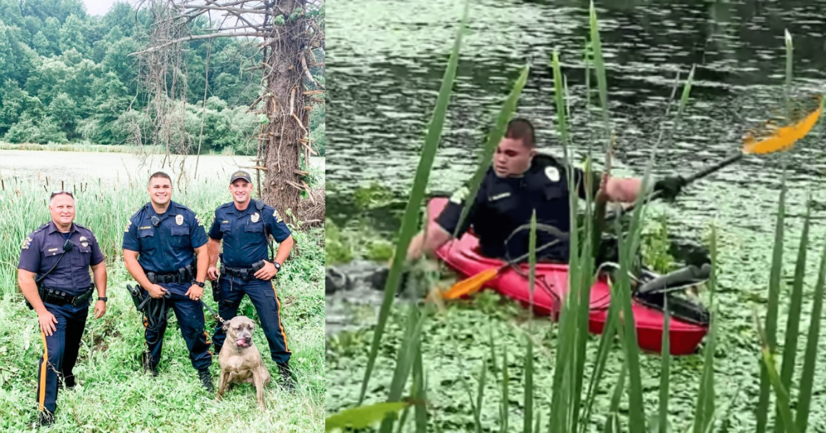 Brave police officers dive into muddy pond to rescue drowning dog